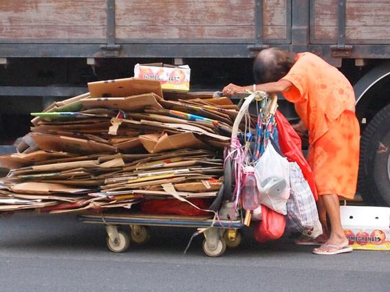Cardboard collector
