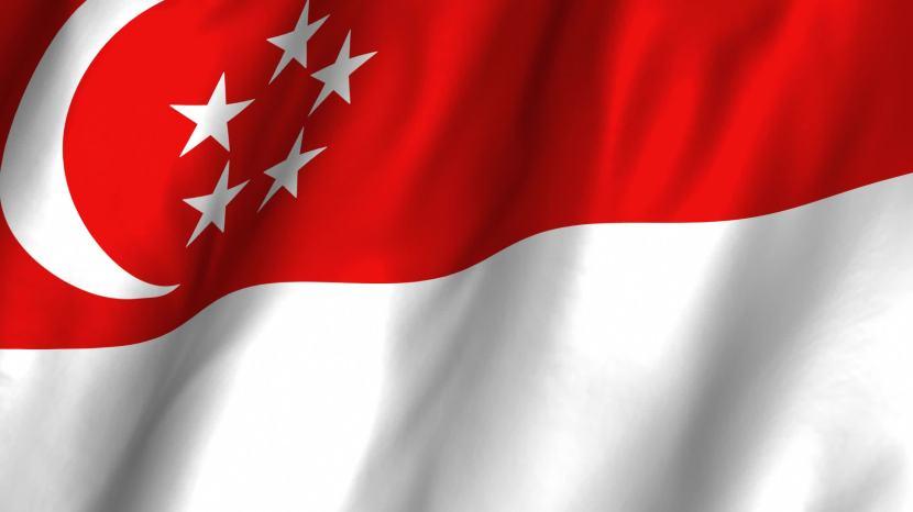 Singapore Flag 1