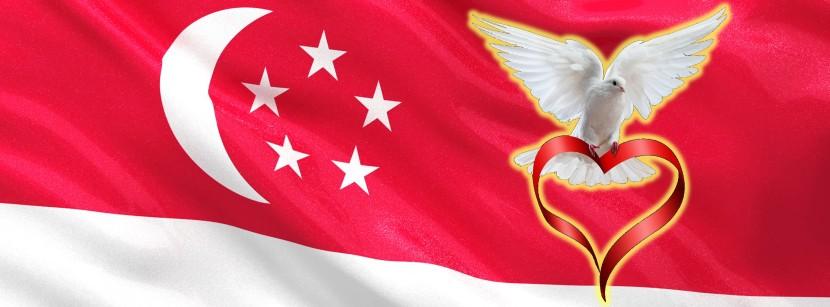 Singapore Flag Dove 4