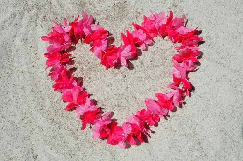 Heart-shaped flowers on sand.jpg