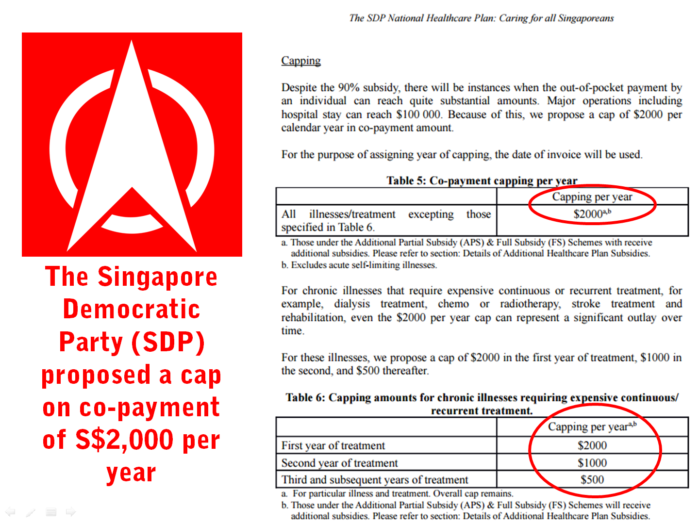 8 SDP Healthcare Co-Payment Proposal.png
